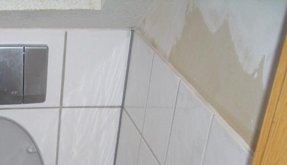 Die Wand im Klo 2005