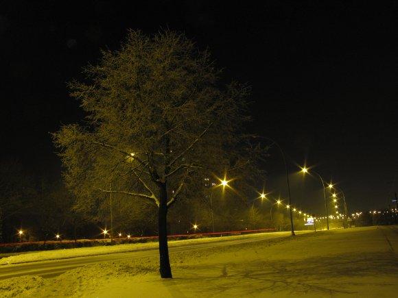Morgendliche Schneelandschaft, Quelle: Sash